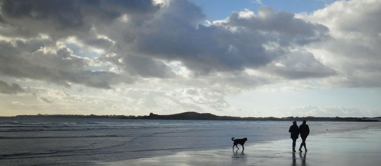 Pärchen mit Hund spazieren am Strand